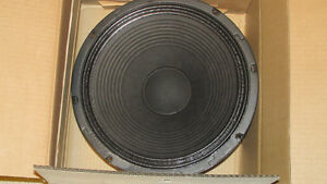 "Fender  champion  special  design 12""  speaker"