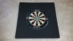 Dart Board and Backing ( Used 2 Times )