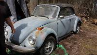 1979 beetle convertible