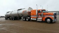 Regional Truck Driver Wanted