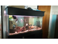 3ft fish tank with stand hood in black ash SOLD PENDING COLLECTION