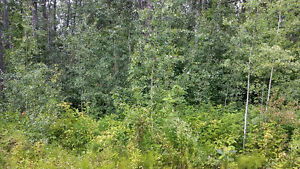OUR BEST TREED LAKE LOT! 10% off!! RENT TO OWN IT !