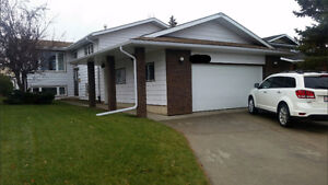 Downstairs Roomate, Split level house, Millwoods