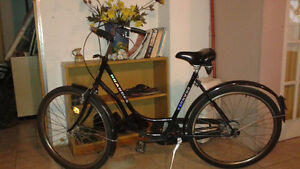 Cool 5-Speed Bike for Sale