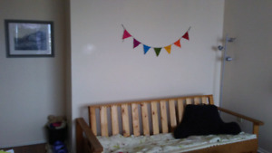 Apartment to share available - pet friendly - point pleseant