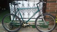 BIANCHI OCELOT bike