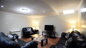 Beautifull one bedroom basement apartment in Brampton