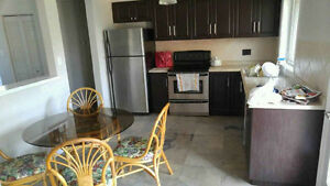 LARGE RECENTLY RENOVATED HOUSE W/ ROOM FOR RENT