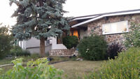 Southgate 6 bedrooms bungalow entire house with sbasement sutie