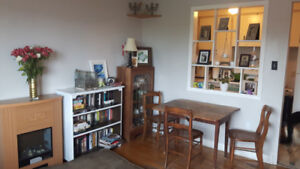 Bright 2 brm pet/dog friendly apt available across from MSVU