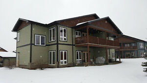 Spacious 3Bd/2Bth Condo/Townhouse in Stony Plain