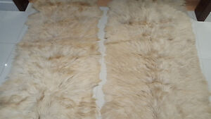 Genuine queen size  goat skin  and 2 rugs (36' x 48')
