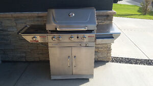 FREE Stainless Steel BBQ