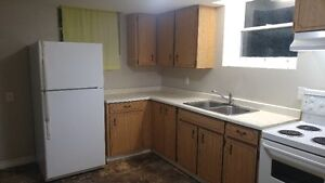 One Bedroom Basement Apartment for Rent in Downtown Colborne Peterborough Peterborough Area image 2