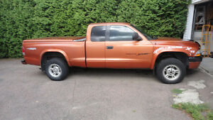 2000 Dodge Dakota Camionnette avec tonneau cover.