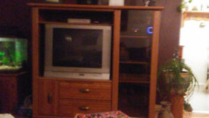 wall unit with tv