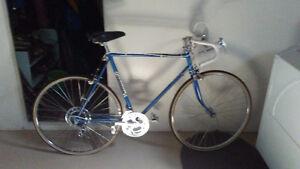 "1974 Royal Knight Bike 23"" Frame"