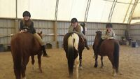 Riding lesson and Part boarding