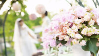 Best Wedding Videography DISCOUNTED FIRST 5 CLIENTS!
