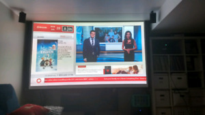 Projection screen  portable