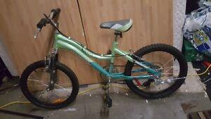 "VAGABOND 20"" 6 Speed Atomik Girls Bike"