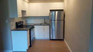 STUNNING RENOS 2 GREAT LOCATIONS-ROSEDALE & DOWNTOWN!!