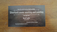 Silverback power washing and painting