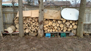 firewood for sale ash, willing to barter