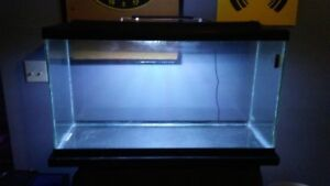 40 gallon aquarium 3 ft wide and accessorys