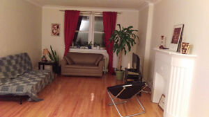 1 room available in 2BR apt - Sept - Daly ave (Sandy Hill)
