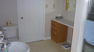 3 bedroom apt.main floor of house Sarnia Sarnia Area image 3