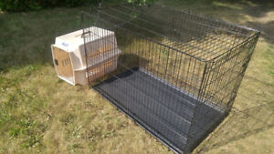 Large Dog crate/cage for sale in Whitby