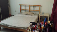Master Bedroom in a 1 bedroom apartment on Whyte (Female)