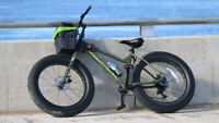 Stolen: Norco Bigfoot - Dark Green