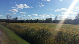 108 ACRES  PRIME LAND FOR SALE .DOUBLE YOUR INVESTMENT