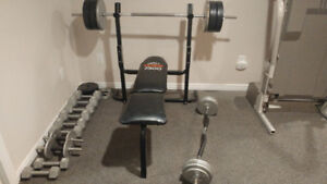 Various weights 300lbs plus..bench. Bars.