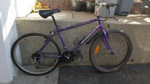 Vélo de montagne Bonelli Large