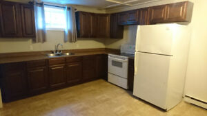 2 bedroom basement apartment for rent - GANDER