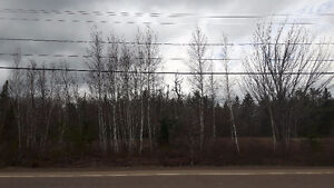 Great building spot 1 acre of flat land.