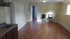 1 bedroom basement apartment - Kenmount Terrace