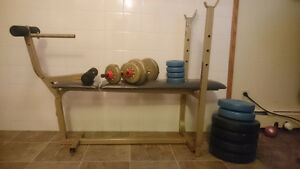Exercise Bench with barbell and dumbbells