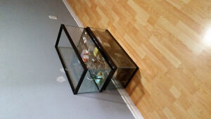 Two 20 gallon aquariums and accesories