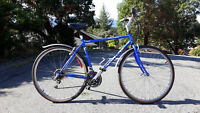 Norco Olympia Hybrid Bike