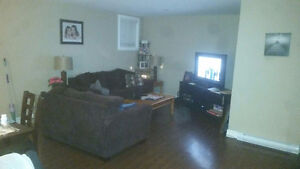 2 bedroom downstairs apartment