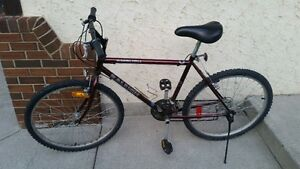 """21 Speed Raleigh Bike 19"""" frame new tires, working great"""