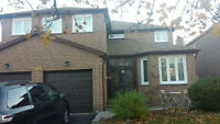 2 bedroom basement just renovated all utilities included