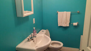 Collingwood Spacious 1 bdrm bsmnt apt. $825 + available May 1st