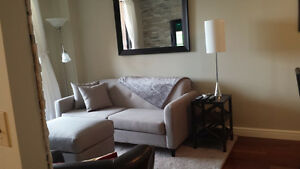 Executive Furnished One Bedroom Condo  March 1st
