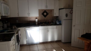 Roommate wanted for end of February!!!