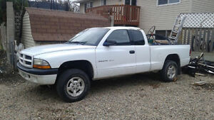2002 Dodge Dakota Parts Truck Body, engine all available.   Will
